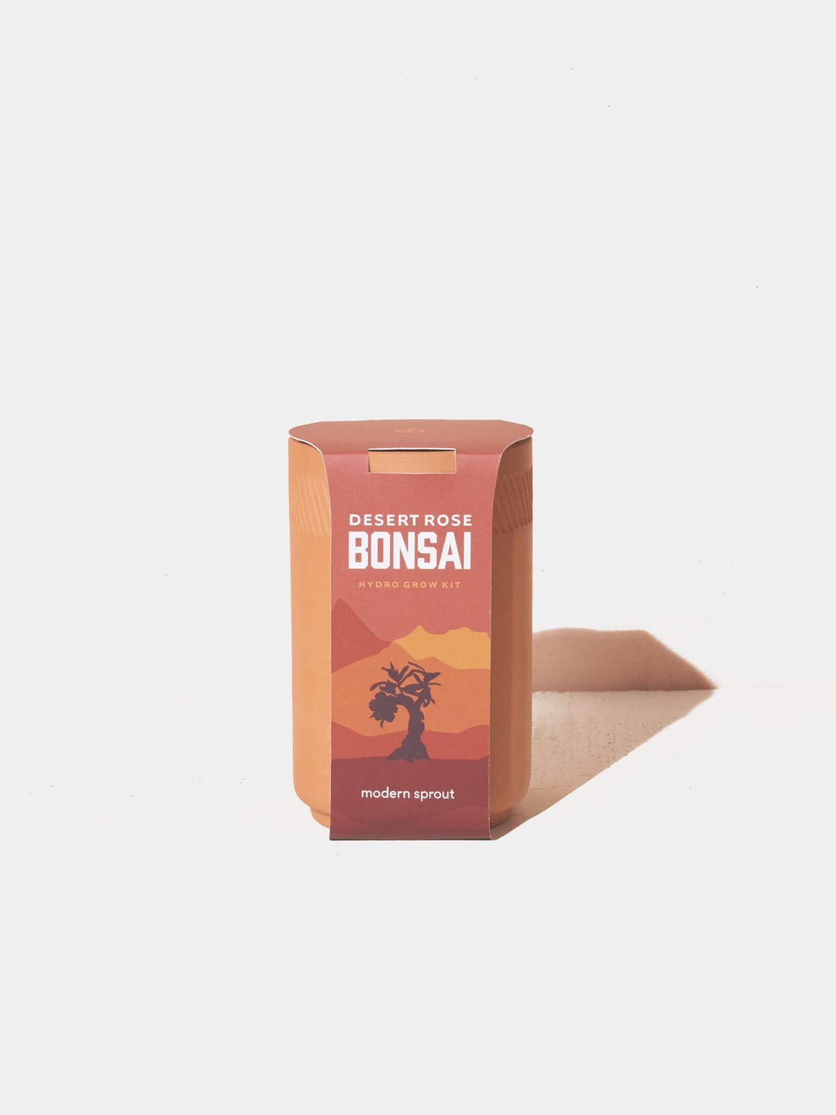 Modern Sprout Desert Rose Bonsai Terracotta Grow Kit Verishop